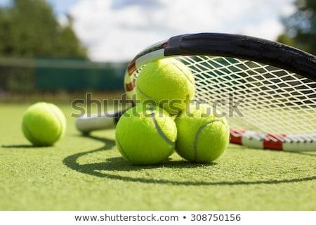 Gras tennisbal net spel champagne aardbeien Stockfoto © unikpix