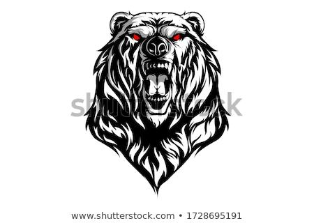 ベクトル クマ 孤立した 黒 頭 ストックフォト © morys