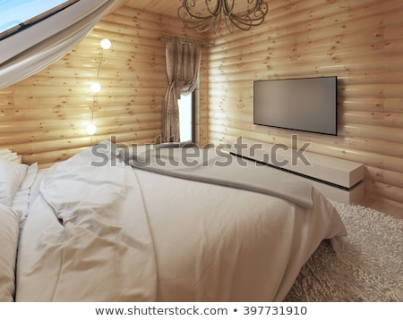 Wall mounted tv cabinet and big tv Stock photo © magraphics