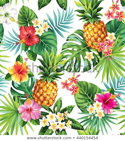 Stockfoto: Pineapple And Tropical Flowers