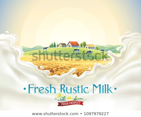 Fresh Drink, Countryside Dairy Product Vector Stock photo © robuart