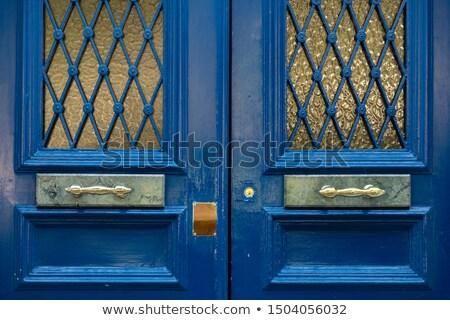 Glossy metal knob on grid Stock photo © evgeny89