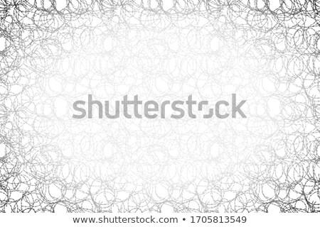 черный колючую проволоку широкий белый дизайна фон Сток-фото © evgeny89