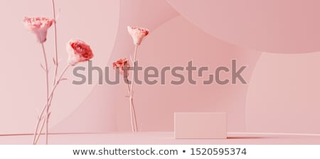 美しい ピンク 在庫 画像 美人 顔 ストックフォト © iodrakon