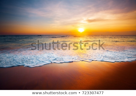 Morning on the beach Stock photo © stevanovicigor