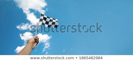 Checkered Flag over a sky background Stock photo © dacasdo