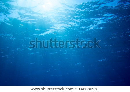 underwater background with sunbeams lighting effect stock photo © simpson33