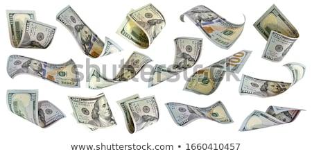 US dollar Stock photo © janaka