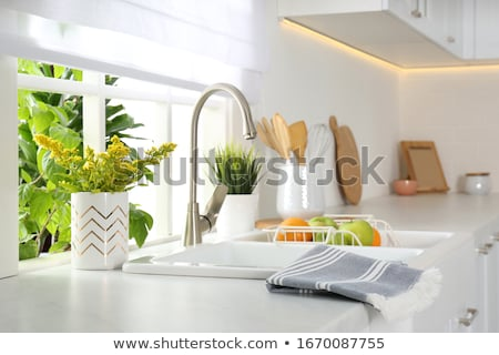 Kitchen Sink Faucet  Stock photo © tab62