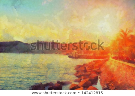 Struktúra pálmafa reggel nap fényes fa Stock fotó © meinzahn