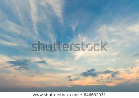 szélturbina · drámai · égbolt · felhők · tájkép · mező - stock fotó © mps197