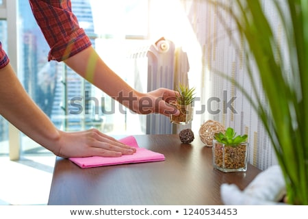 Domu czyszczenia brudne szmata ludzka ręka rękawica Zdjęcia stock © simazoran