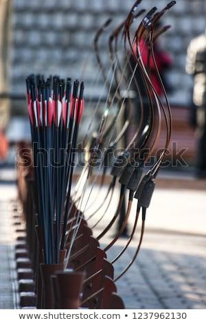 íjászat · vonzó · nő · íjász · görbület · íj · fű - stock fotó © wime