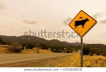 Schilderachtig teken New Mexico USA Blauw vakantie Stockfoto © tang90246