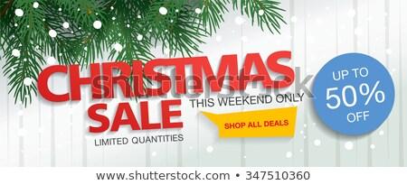 Karácsony üzlet zöld vektor ikon terv Stock fotó © rizwanali3d