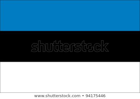 Bandeira Estônia ilustração branco assinar preto Foto stock © Lom
