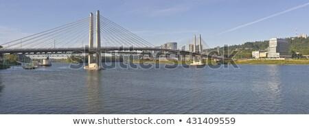 橋 オレゴン州 パノラマ 建設 木 産業 ストックフォト © Rigucci