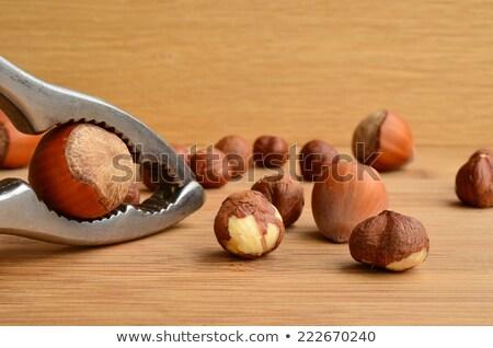 Nutcracker with one hazelnut Stock photo © andreasberheide