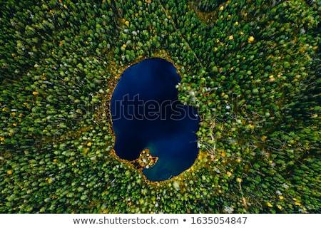Piękna jezioro widok z góry wyspa zielone Zdjęcia stock © romvo