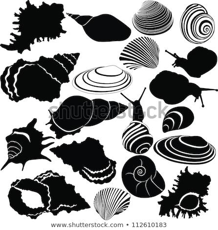 toplama · balık · doğa · yaprak · sanat - stok fotoğraf © popaukropa