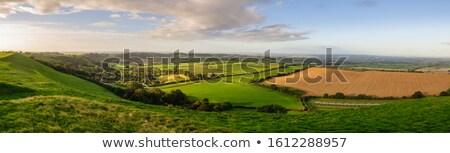 Campagna panorama mattina campi Foto d'archivio © hraska