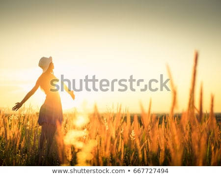 Fiatal nő kint búzamező napos ősz nap Stock fotó © MikhailMishchenko
