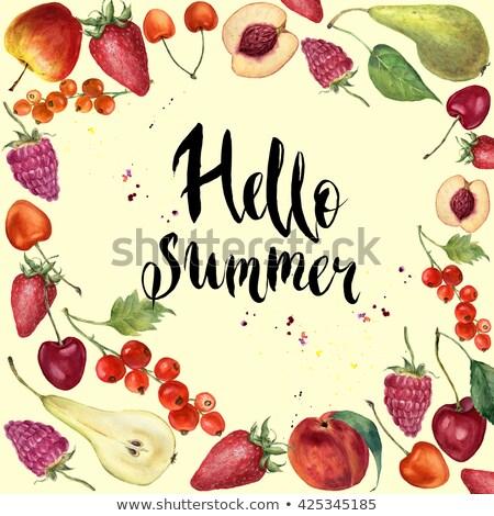 Olá verão aquarela bandeira cerejas Foto stock © balasoiu