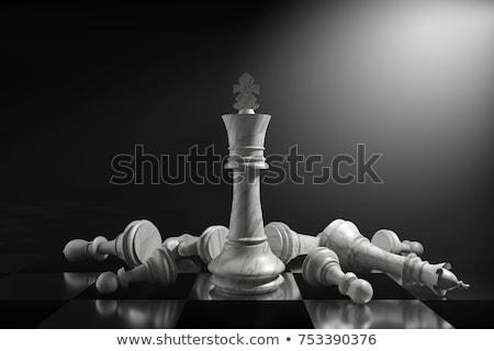 conceptual piece chess Stock photo © orla