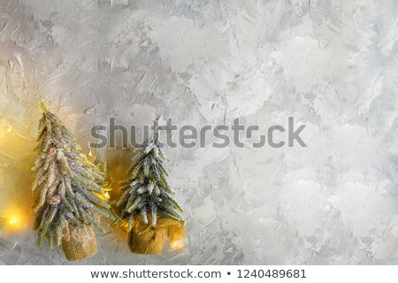 Miniature pine tree Stock photo © homydesign