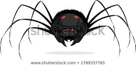 menacing spider Stock photo © smithore
