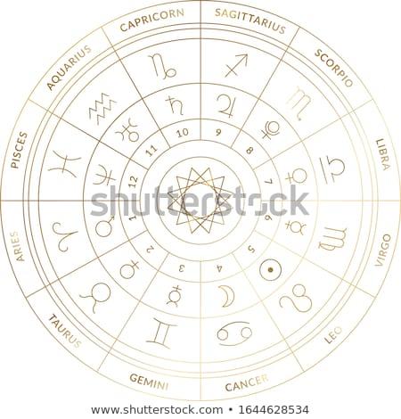 horóscopo · zodíaco · ilustração · símbolos · gráfico · astrologia - foto stock © samsem