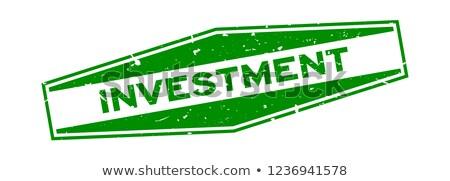 earn money in green hexagon banner Stock photo © marinini