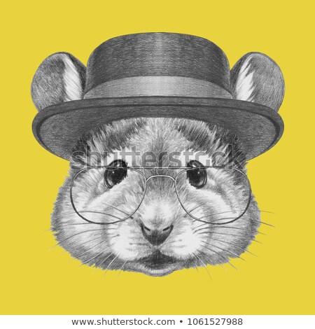 マウス · 紳士 · 実例 · 傘 - ストックフォト © Aleksa_D