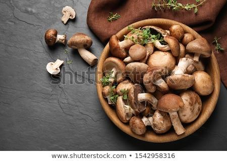 ストックフォト: 生 · キノコ · 木材 · キッチン · ディナー · サラダ