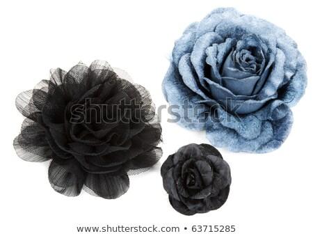 Floral renda azul seda cetim tecido Foto stock © Sarkao