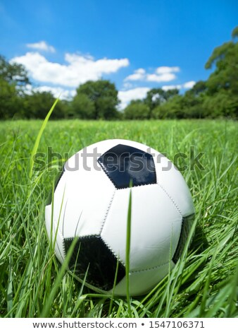 Stock photo: Sport equipment and balls, natural colorful tone