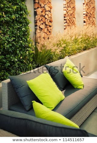Comfortable modern settee on an outdoor patio Stock photo © ozgur