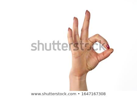 Womans hand on white Stock photo © cherezoff