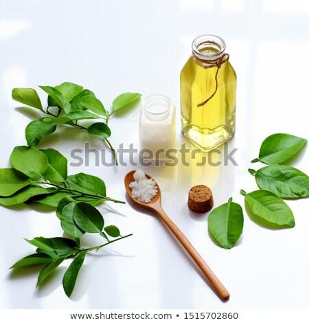 Eigengemaakt natuurlijke antibacteriële water huis medische Stockfoto © mady70