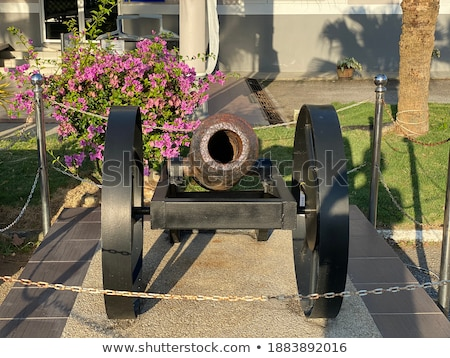 old antique cannons Stock photo © Klinker