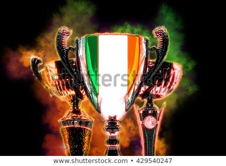 Trofeo Cup bandiera Irlanda illustrazione digitale Foto d'archivio © Kirill_M