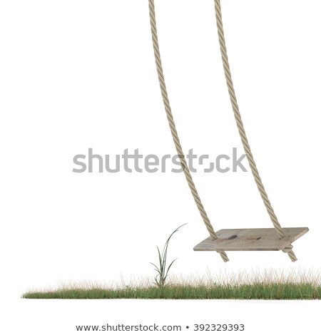 Swing made of rope and a wooden plank over grass ground. 3D Stock photo © djmilic