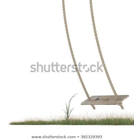 vazio · balançar · símbolo · morto · criança · grama - foto stock © djmilic
