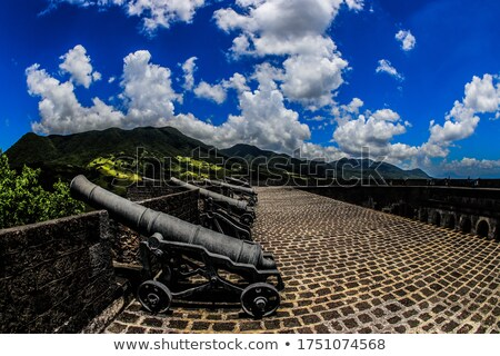 Old Cannon at the Ready Stock photo © Backyard-Photography