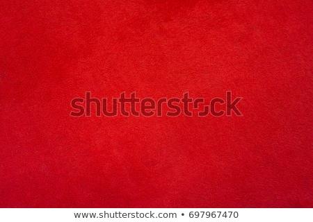 Luminoso rosso grunge stile muro Foto d'archivio © dariazu