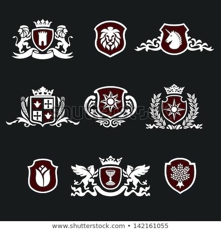 Stock fotó: Oroszlán · pajzs · szimbólum · felirat · állat · kabát