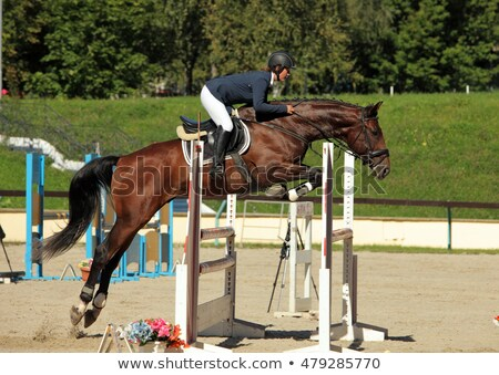 Jumping over head at training Stock photo © pressmaster