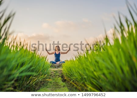 Young woman practice yoga outdoor in rice fields in the morning during wellness retreat in Bali Stock photo © galitskaya