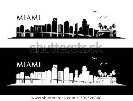 Miami városkép feketefehér sziluett egyszerű turizmus Stock fotó © ShustrikS