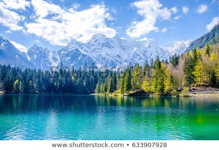 美しい 風景 山 湖 オーストリア ストックフォト © artjazz